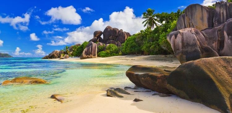 fotos-de-playas-paradisiacas-palmeras-y-arena-junto-al-mar-azul-6